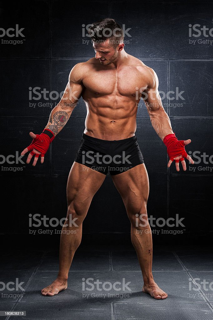The Fighter royalty-free stock photo