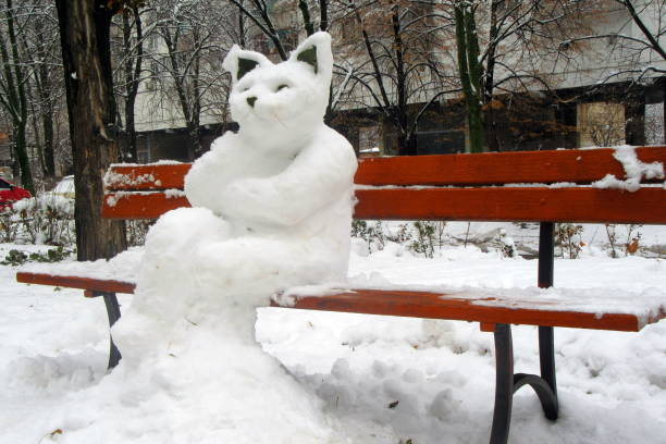 The figure of a huge cat sculpted from the snow on the city bench in picture id1084415506?b=1&k=6&m=1084415506&s=612x612&w=0&h=f3b3p1 nk0ymwowgw1dorzsczai2i6xinkhnydwjhg4=