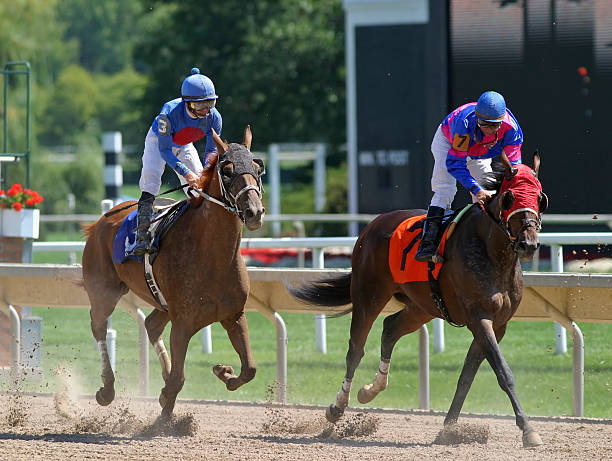 the finish - horse bit stock pictures, royalty-free photos & images