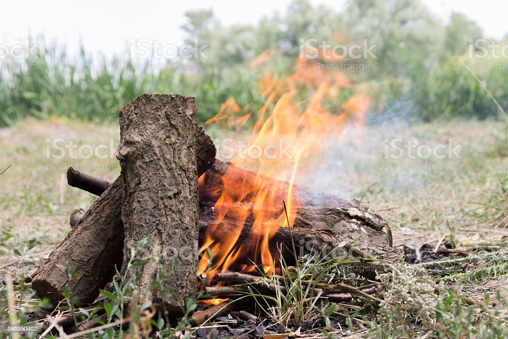 The fire on the nature. royalty-free stock photo