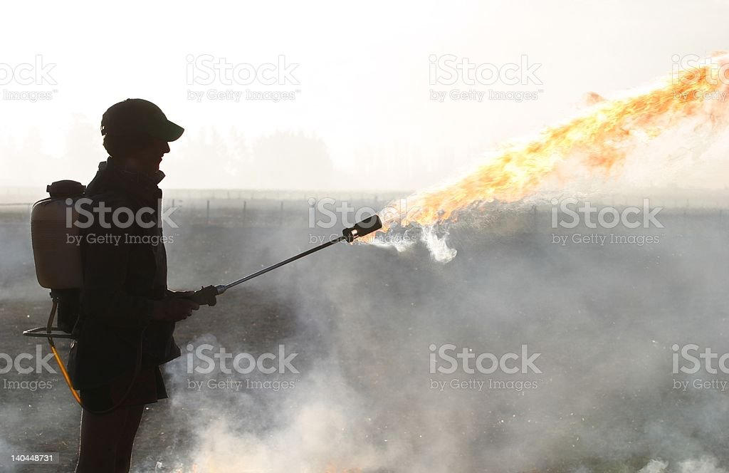 The fire starter Farm hand showing off flame thrower used for lighting stubble/grass fires for a burn off on farmland in Canterbury, New Zealand Adult Stock Photo