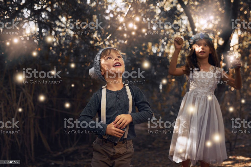 The fireflies have come out to play stock photo