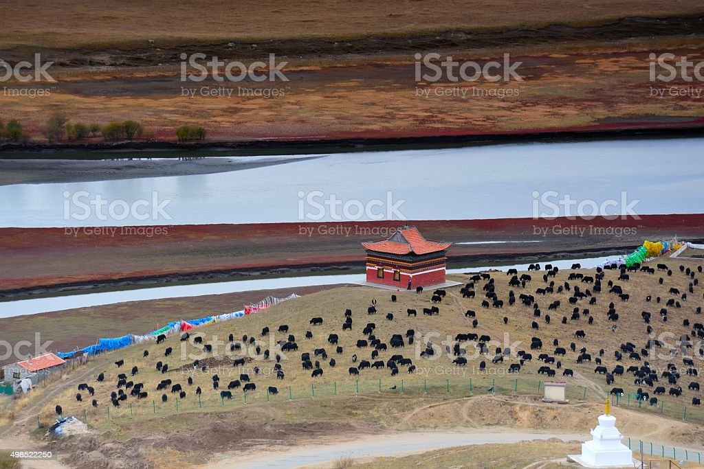The first bend of Yellow river in China 003 stock photo