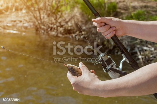 1145410808 istock photo The fisherman is holding a fish caught on a hook 802322884