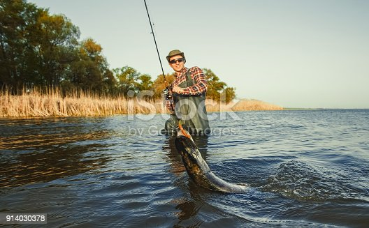 914030378 istock photo The fisherman is holding a fish pike caught on a hook 914030378