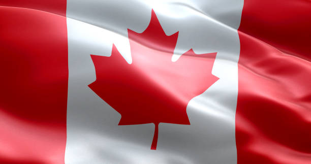 The flag of Canada The flag of Canada canada flag photos stock pictures, royalty-free photos & images