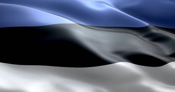 Le drapeau de l'Estonie - Photo