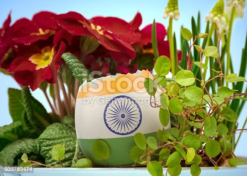 922661892 istock photo The flag of India on an cracked egg in a floral scene.(series) 933789474