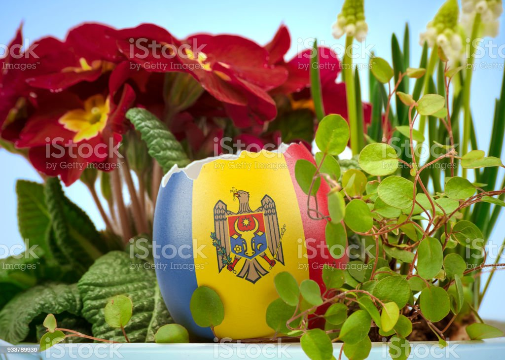 The flag of Moldova on an cracked egg in a floral scene.(series) stock photo