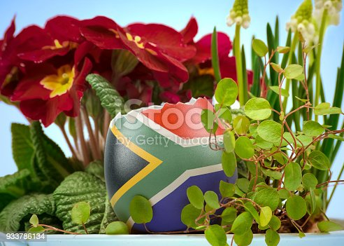 istock The flag of South Africa on an cracked egg in a floral scene.(series) 933786134