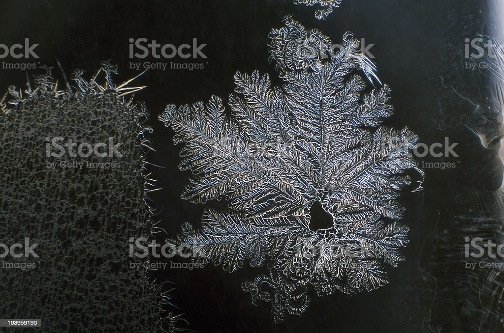 The  flower of  ice royalty-free stock photo