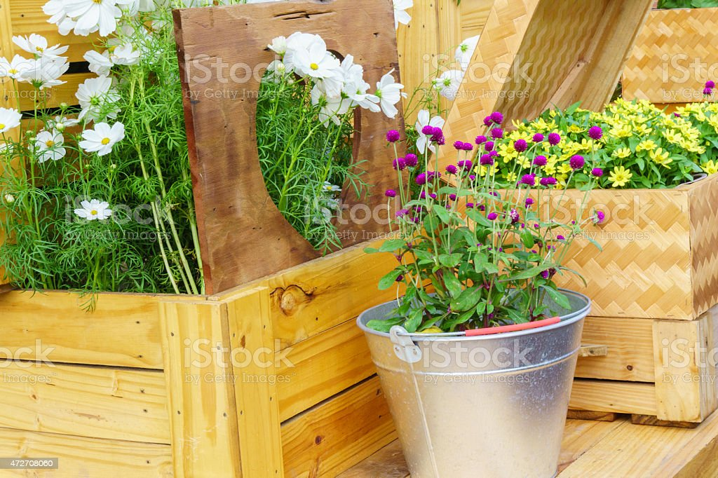 The flowers and wood background stock photo