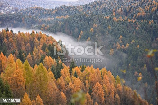 istock The fog in the valley on the river 984296266