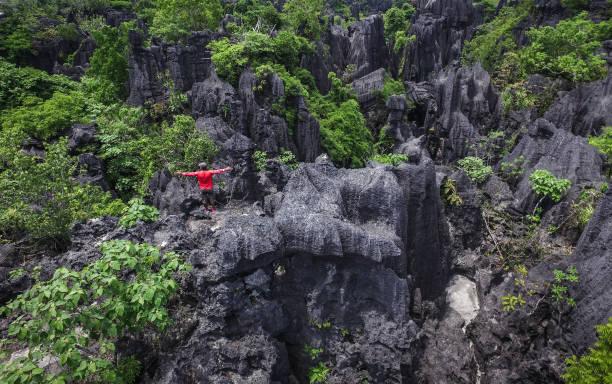 The Forest of Rock (Hutan Batu) in Rammang-Rammang - Sulawesi Ramang-Rammang forest of rock or known as