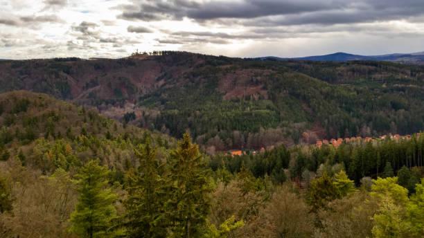 The forests around Karlovy Vary stock photo