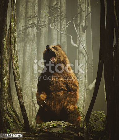 The forest's tales,Brown grizzly bear in magical forest,3d illustration