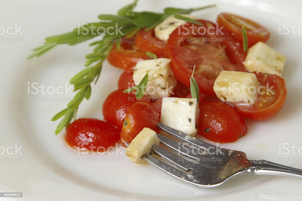 The Fork royalty-free stock photo