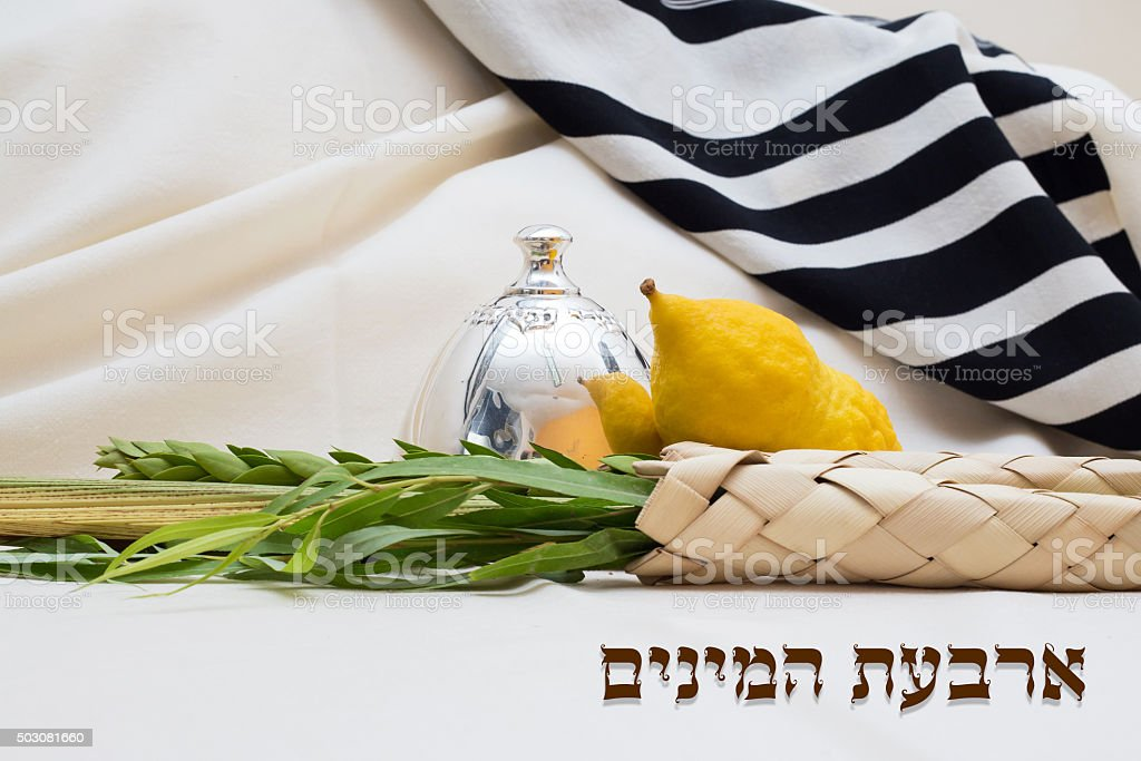 The four species for Sukkot stock photo