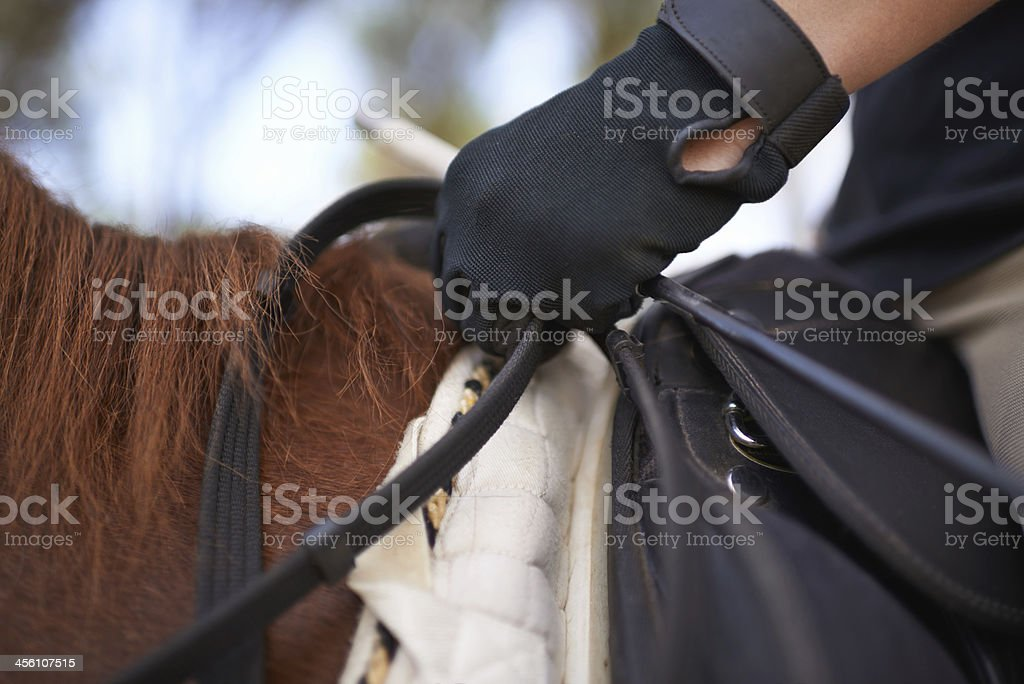 The freedom of riding... stock photo