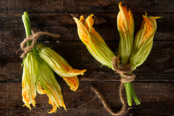 die frischen gelben kürbis blume - gefüllte zucchini vegetarisch stock-fotos und bilder