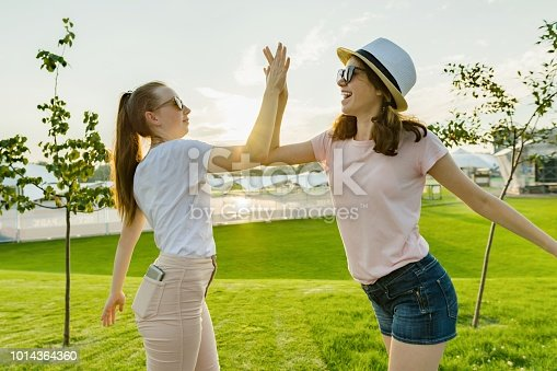 istock The friendship of two teenage girls, best girlfriends have fun in nature, on the green lawn of recreation park and entertainment, greet each other. 1014364360