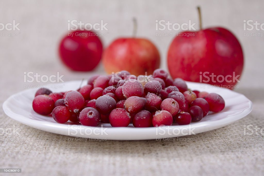 The frozen cowberry royalty-free stock photo