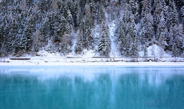 the frozen lake in the forest