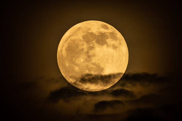 the full moon on the moon night is yellow. and some clouds floating. - luna piena foto e immagini stock