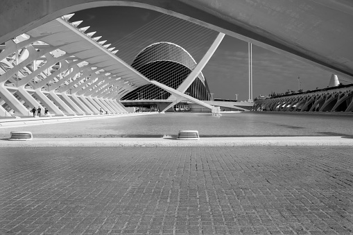 The futuristic architecture of the City of Arts and Sciences located in Valencia, Spain. A project by Valencian architect Santiago Calatrava managed with the collaboration of Félix Candela. Black and white partial view.