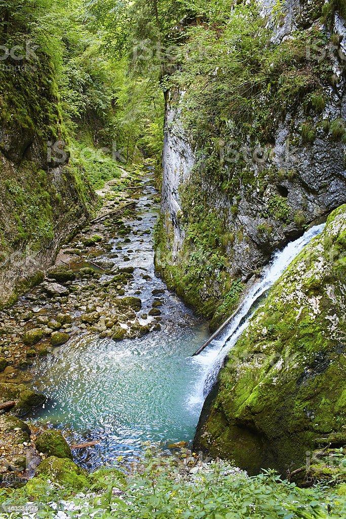 The Galbenei Gorge from Carpathian mountains stock photo