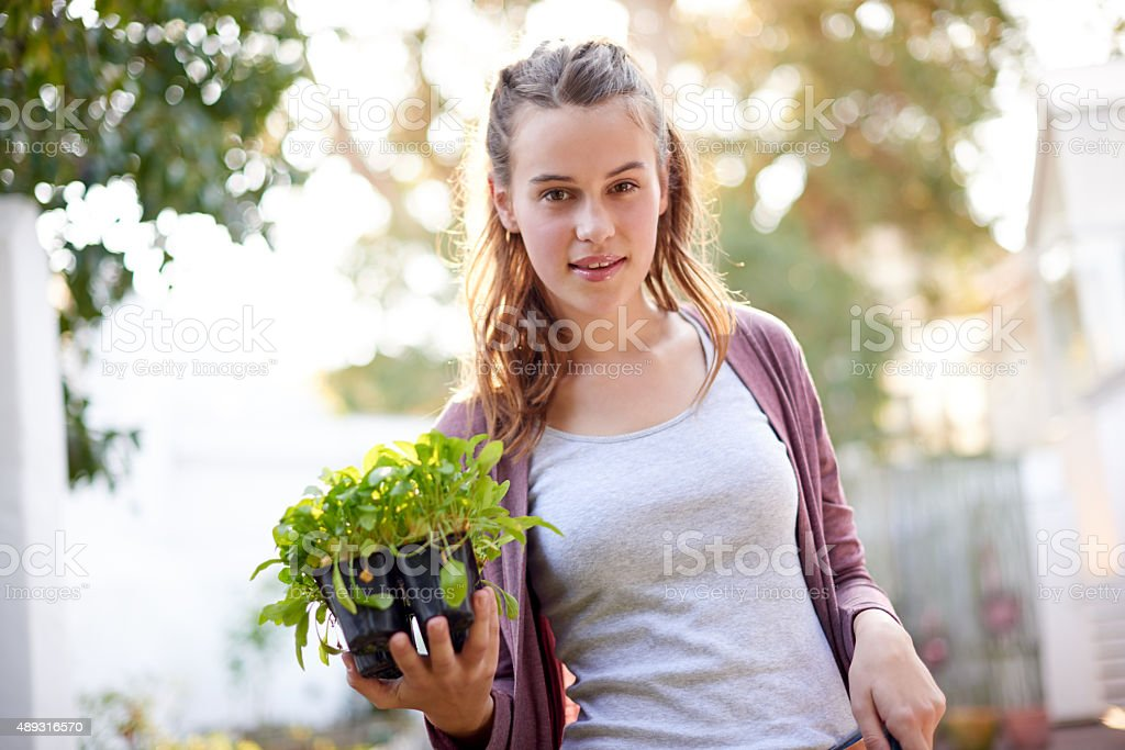 The garden is a friend you can visit anytime stock photo