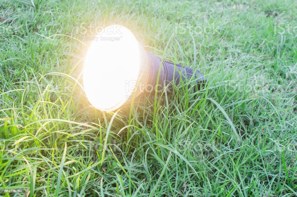 The garden lamp on a grass in the park. royalty-free stock photo