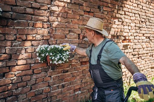 The gardener nurtures flowers