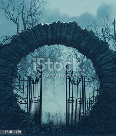 istock The gates is open 1171511776