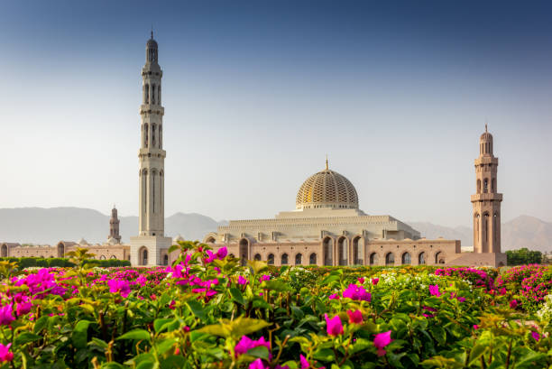 the geometric beauty of  of the muscat grand mosque and its garden in the early morning - 10 - oman стоковые фото и изображения