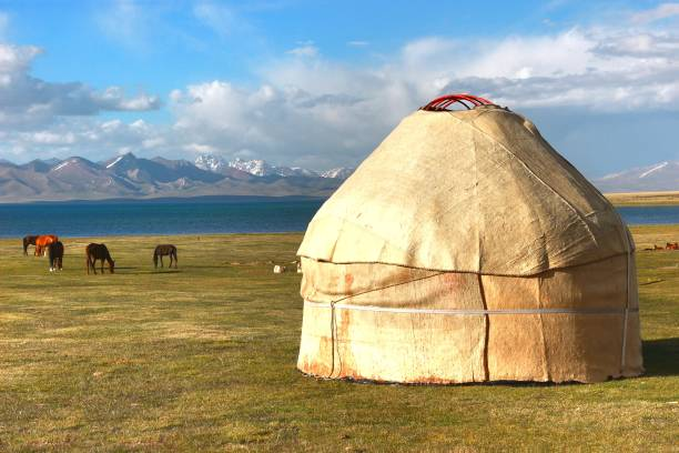 The ger camp in a large meadow at Ulaanbaatar , Mongolia The ger camp in a large meadow at Ulaanbaatar , Mongolia steppe stock pictures, royalty-free photos & images