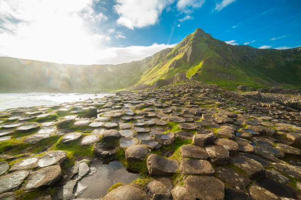 the giant's causeway at dawn on a sunny day with the famous basalt columns, the result of an ancient volcanic eruption. county antrim on the north coast of northern ireland, uk - unesco foto e immagini stock