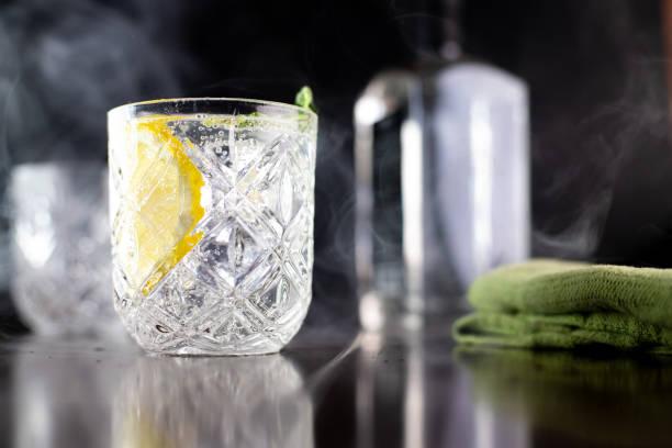 de gin tonic - gin tonic stockfoto's en -beelden