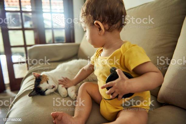 The girl caresses the cat on the couch picture id1227165200?b=1&k=6&m=1227165200&s=612x612&h=2shnzuhgdi e3pxyept1you dotdmnkzs 9jyxcmvv0=