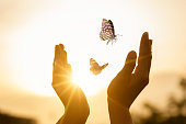 istock The girl frees the butterfly from  moment Concept of freedom 1275296312