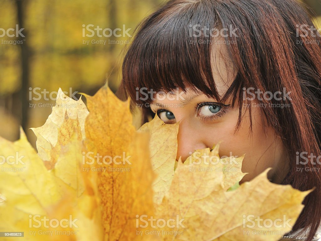 The girl in an autumn forest royalty-free stock photo