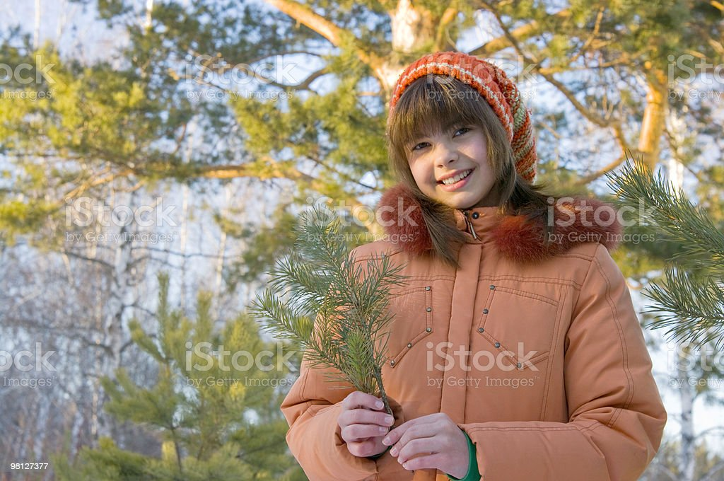 The Girl in pine wood royalty-free stock photo