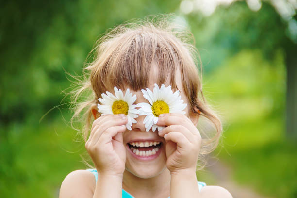 the girl is holding chamomile flowers in her hands. Selective focus. the girl is holding chamomile flowers in her hands. Selective focus. nature. Mother Nature stock pictures, royalty-free photos & images