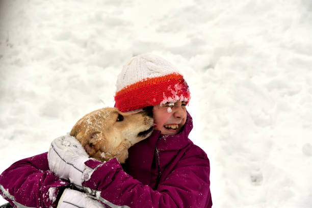 The girl is playing with the dog in the snow and gives him a kiss picture id1093481892?b=1&k=6&m=1093481892&s=612x612&w=0&h= 8d8aejldncydpncqd6rqbtvr5dsqxnxme8 3lktz64=