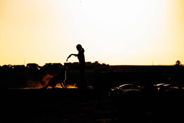 The girl is sitting on a huge trailer at sunset and her dog is next picture id1136250752?b=1&k=6&m=1136250752&s=612x612&w=0&h=y9pa9xdx6iz9be3iai1wbkje66xrbvs3ozm7d9ftvgi=