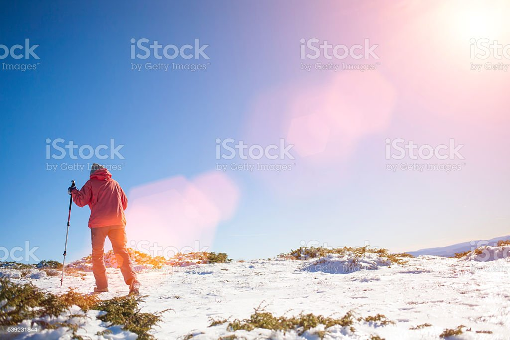 The girl walks in the mountains. royalty-free stock photo