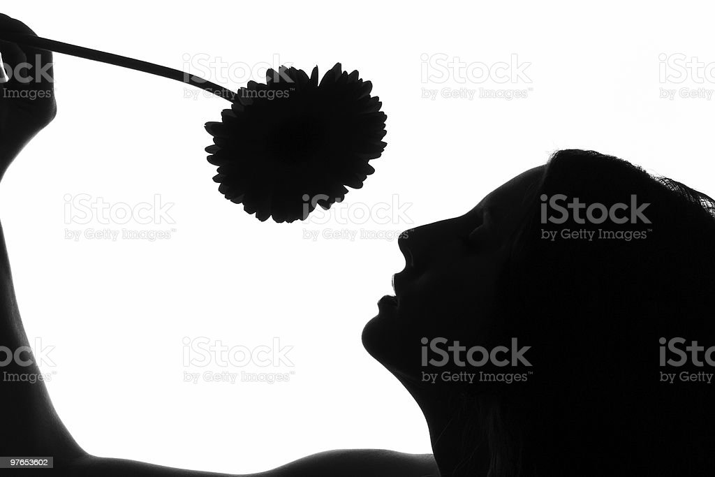 The girl with flower on a white background royalty-free stock photo