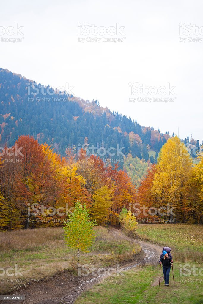 The girl with the backpack in the forest. royalty-free stock photo