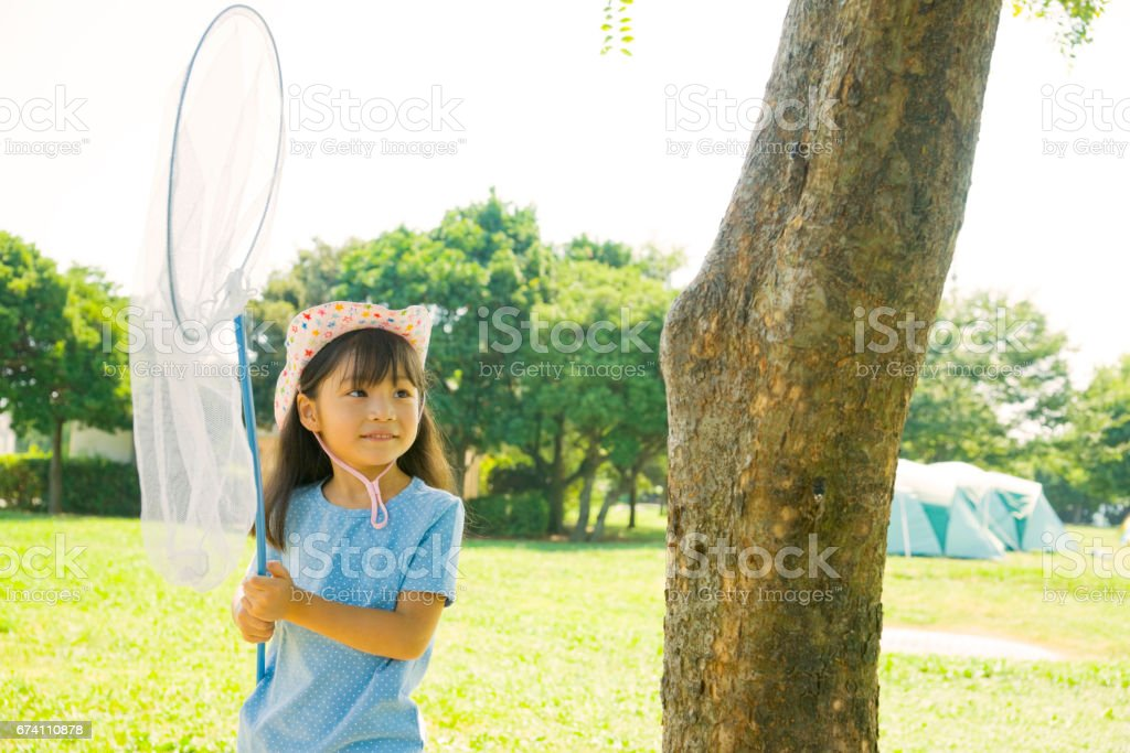 The girl with the butterfly net royalty-free stock photo