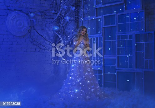 891402486 istock photo The girl woke up on Christmas night and in her room a miracle turned, magic turned her into a fairy princess. 917923038